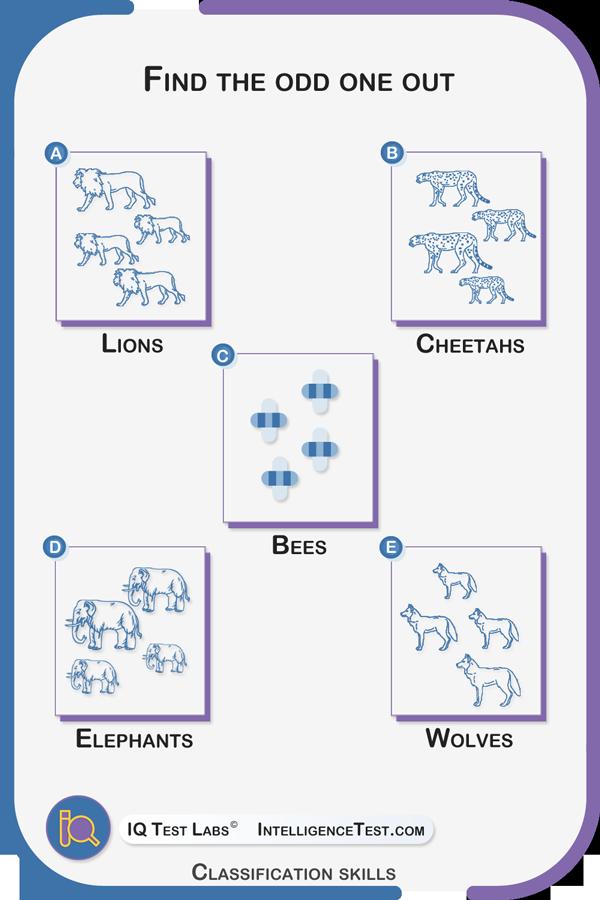 Classification skills - latest question.