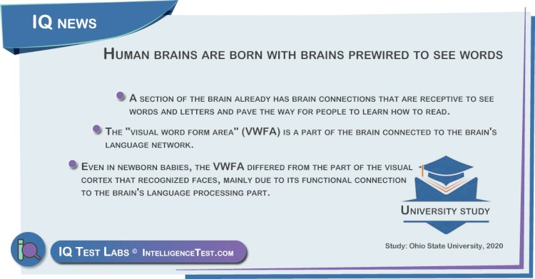 Humans are born with brains prewired to see words