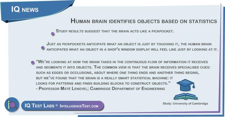 Human brain identifies objects based on statistics